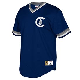 60b79095b63 Chicago Cubs Youth 1914 Mitchell and Ness Mesh Jersey