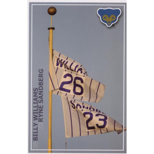 Williams and Sandberg Flags Post Card