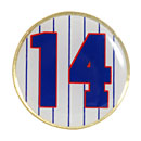 Chicago Cubs Ernie Banks Jersey Number Collectible Souvenir Pin