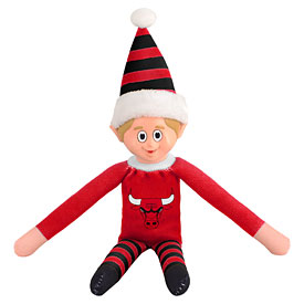 Chicago Bulls Team Elf